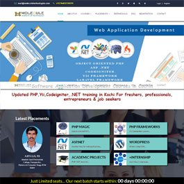 Website design in ernakulam